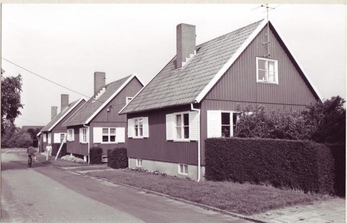 Svenskehusene i Nexø og Rønne